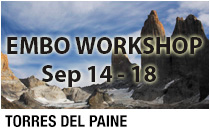 Embo
